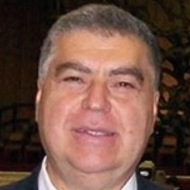 Mauro Guerrini